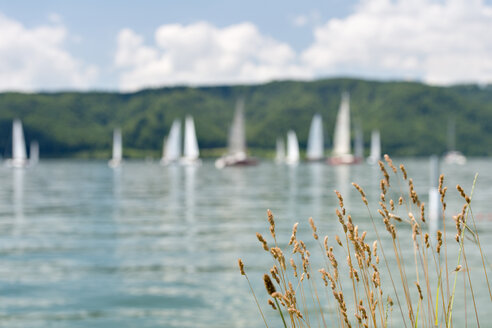 Germany, Baden-Wurttenberg, Sipplingen, Boats in front of Bodanruck on  Lake Constance - SH000878