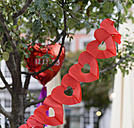 Germany, North Rhine-Westphalia, Aachen, register office, wedding, garland and ballon in a tree - HL000256