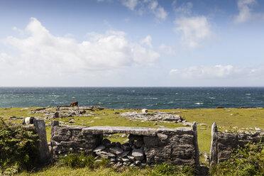 Ireland, County Clare, Stone wall at teh ocean near Doolin - SRF000372
