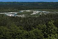 Germany, Upper Bavaria, river Isar at Pupplinger Au, Isartal - TCF003632