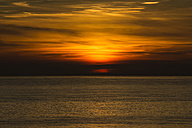 Holland, North Sea, coast, dunes at sunset - MYF000053