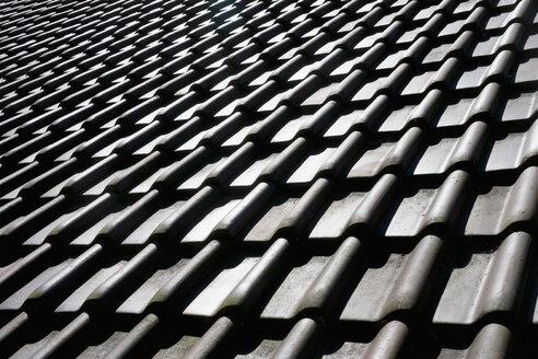Tiled roof - TCF003646