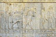 Iran, Achaemenid archeological site of Persepolis, Scythians offering a horse, bas-relief on the Apadana Palace - ES000683