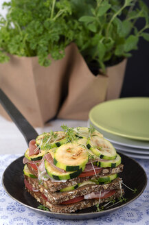 Whole-grain bread sandwich with ham, roasted zucchinis, tomatoes and cheese in frying pan, studio shot - ODF000628