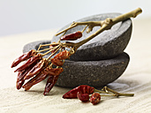 Dried red chili peppers on top of two stone bowls on wooden table - SRSF000329