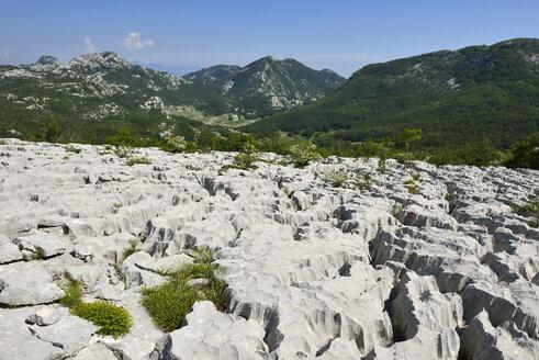 Montenegro, Crna Gora, Karst plateau on Subra Mountain, Orjen region - ES000701