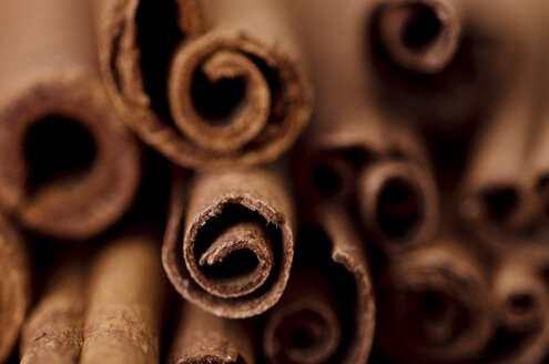 Cinnamon sticks, close-up - CZF000110