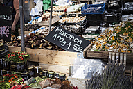 Germany, Munich, market stall with different mushrooms at Viktualienmarkt - SBDF000341