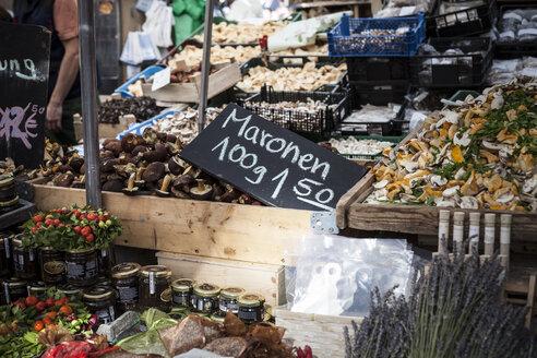 Germany, Munich, market stall with different mushrooms at Viktualienmarkt - SBDF000341