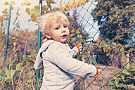 Germany, Bonn, Baby boy exploring garden - MFF000606