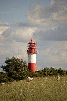 Germany, Schleswig-Holstein, Flensburg Fiord, Lighthouse Falshoft - JEDF000030