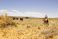 USA, Utah, Escalante, Cowboy herds cattles - MBE000831