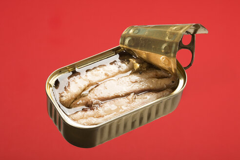 Can with sardines (Sardina pilchardus), studio shot - WSF000017