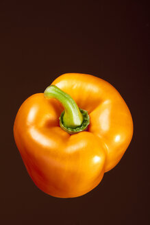 Orange bell pepper (Capsicum), studio shot - WSF000028