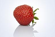 Single strawberry, close up - STKF000563