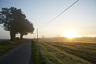France, Burgundy, Fields and street near La Machine - DHL000183