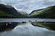 UK, Wales, Lake Tal-y-llyn in Snowdonia National Park - ELF000616