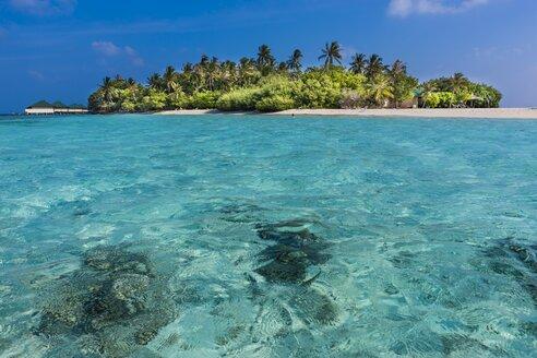 Maledives, South-Male-Atoll, Embudu, island - AMF001192