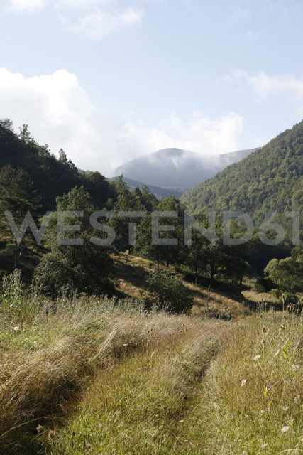 Spain, Catalonia, Meadow in the Pyrenees - JMF000250 - Pascal Miller/Westend61