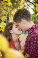 Happy young couple kissing in a park - BGF000028