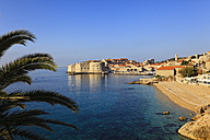 Croatia, Dubrovnik, View of old town - MSF003022