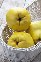 Three quinces (Cydonia oblonga) in white basket on wooden table - CSF020326