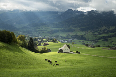Switzerland, Canton of St. Gallen, Swiss alps - ELF000645