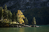 Switzerland, Canton Appenzell Innerrhoden, Seealpsee in autumn - ELF000638