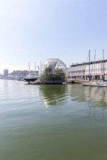 Italy, Genoa, Glass sphere La Biosfera at Porto Antico - AM001344