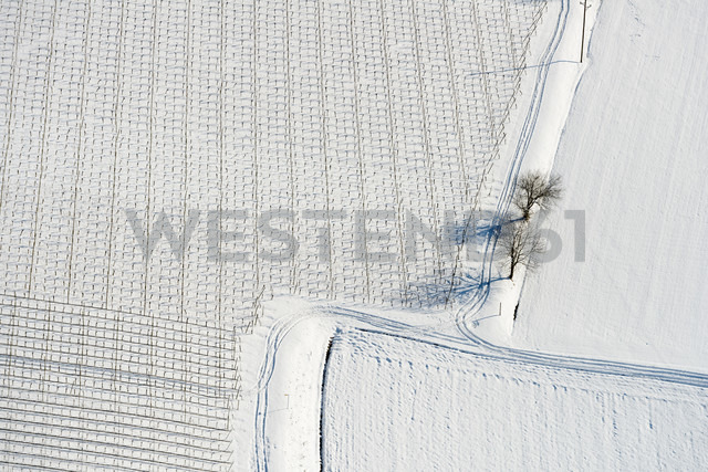 Germany, Baden-Wurttemberg, Markdorf, Aerial view of snow-capped fields - SH001098