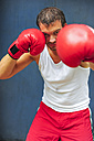 Boxer with red boxing gloves fighting - PAF000072