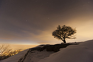 Germany, Bonn, Siebengebirge, Bare Tree on hill in winter - PA000045