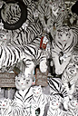 Black and white tiger soft toys - VI000032