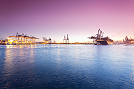 Germany, Hamburg, Parkhafen, harbour, Elbe, container ship - MSF003131