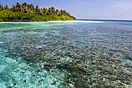 Maledives, Nord-Male-Atoll, Aisen, corals in front of the island - AM001420