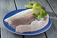 Fish fillets of codfish, coalfish and redfish with slices of limes on blue plate - CSF020563