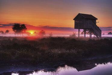 Germany, North Rhine-Westphalia, Recker Moor, Landscape at sunrise - PAF000153