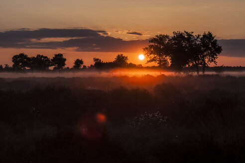 Germany, North Rhine-Westphalia, Recker Moor, Landscape at sunrise - PAF000110