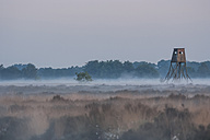 Germany, North Rhine-Westphalia, Recker Moor, Landscape with raise hide in morning fog - PAF000106