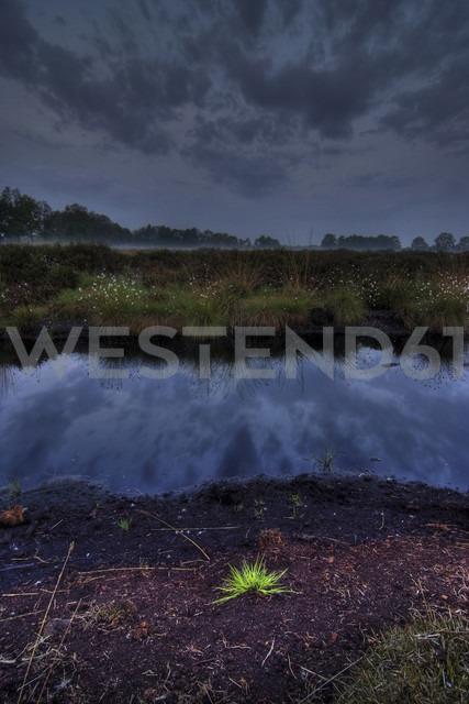 Germany, North Rhine-Westphalia, Recker Moor, Landscape in the morning - PAF000099 - Andreas Pacek/Westend61