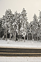 Germany, Thurinigia, Oberhof, Forest and road in winter - BR000014