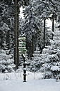 Germany, Thurinigia, Oberhof, Signpost in forest in winter - BR000016