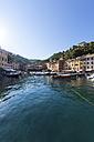 Italy, Liguria, Portofino, View of harbour - AM001494