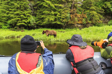 Canada, British Columbia, Khutzeymateen Valley, Khutzeymateen Provincial Park, Khutzeymateen Grizzly Bear Sanctuary, tourists watching grizzly bear - FO005414