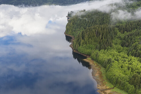 Canada, British Columbia, Khutzeymateen Provincial Park, Great Bear Rainforest, aerial view - FO005426