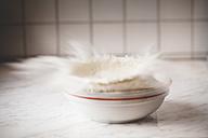 Flour exploding in a bowl - SBDF000363