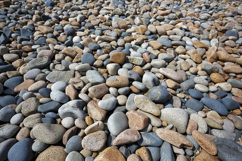 France, Bretagne, Plougrescant, Pebbles on beach - BIF000237