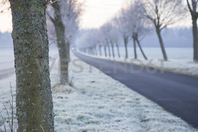 Germany, Baden-Wuerttemberg, Tuebingen, Einsiedel, avenue in winter in the morning - LVF000412