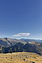 Spain, Aragon, Central Pyrenees, Ordesa y Monte Perdida National Park, Canon de Anisclo, cattle on meadow - LAF000355