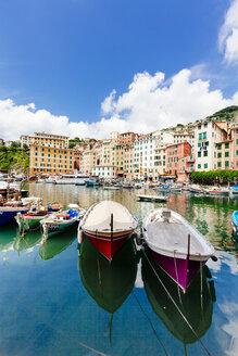 Italy, Liguria, Province of Genoa, Camogli, fishing boats at harbour - AMF001543